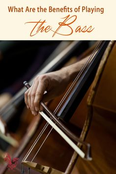 Here are the benefits of playing string bass. http://www.connollymusic.com/revelle/blog/history-of-string-bass @revellestrings