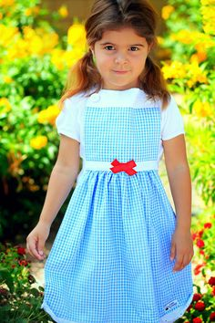 DOROTHY Wizard of OZ Disney inspired Costume Apron. Dress up Play Birthday Party Photo shoot prop. Fits 12 months - Girls 12 Child Childrens