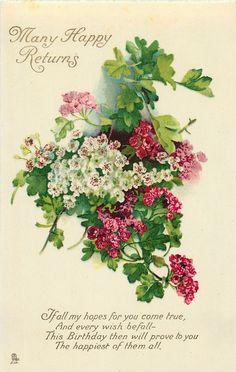 Many Happy Returns red & white geraniums Vintage Greeting Cards, Vintage Ephemera, Vintage Paper, Vintage Pictures, Vintage Images, Vintage Printable, Happy Birthday Vintage, Birthday Postcards, Old Cards
