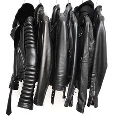 leather jacket collection of dreams