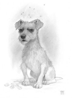 This is brilliant! A drawing of Gaspode the wonder dog from Discworld books. That is so how I picture him in my head (except perhaps he is scrawnier in my head!) the expression is spot on