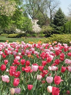 My parents used to drop off my didter and me at church.  We would walk in one door and out the other and cross the street to Sherwood gardens.  Better than church!