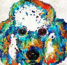 http://fineartamerica.com/featured/colorful-poodle-dog-art-by-sharon-cummings-sharon-cummings.html