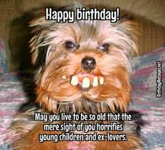 Funny Birthday Wishes & Funny Birthday Quotes: Funny Birthday Messages Happy Birthday Wishes Friendship, Best Happy Birthday Quotes, Happy Birthday Boyfriend, Happy Birthday Wishes For A Friend, Birthday Quotes For Daughter, Happy Birthday Messages, Happy Quotes, Happy Birthdays, Sister Birthday