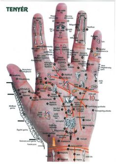 kézreflexológia Acupressure Treatment, Acupuncture, Allergy Remedies, Health Remedies, Health And Wellness, Health Fitness, Medical Anatomy, Foot Reflexology, Abdominal Pain