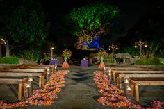 Floral and decor for a Tree of Life wedding at Disney's Animal Kingdom