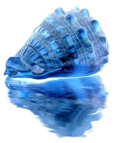 Blue Beauty.°