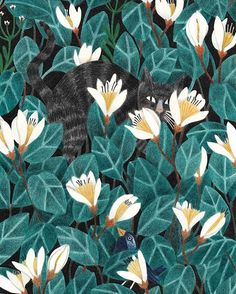 Since today you can find a new print in my webshop! It's called 'Wildernis' and a tribute to my cat Lino who went on a big adventure. The size of the print is 21 x cm and printed on 300 grams, non ironed, off white Munken Paper from Arctic Paper. Art And Illustration, Pattern Illustration, Illustrations And Posters, Cat Wallpaper, Pattern Wallpaper, Motif Floral, Beautiful Drawings, New Print, Cat Art
