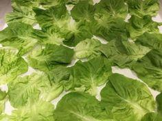 Alimentos y nutrición | Marina Borensztein | Page 2 Lettuce, Vegetables, Food, Food Items, Vegetable Recipes, Eten, Veggie Food, Salad, Meals