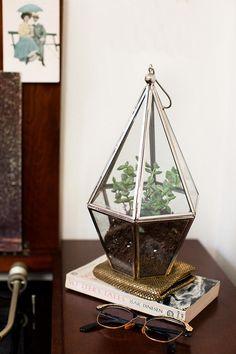 Home Catalog 2012 #urbanoutfitters #faceted #terrarium