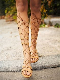 Schutz Desert Horizon Tall Gladiator Sandals at Free People Clothing Boutique