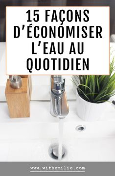 French Lifestyle, Lifestyle Blog, Green Lifestyle, Zero Waste Home, Permaculture, Coin, Laundry Detergent Recipe, Flush Toilet, Homemade