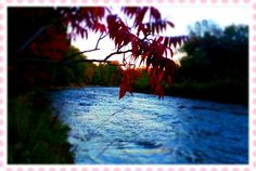Credit river River, Celestial, Sunset, Outdoor, Beauty, Outdoors, Beleza, Cosmetology, Sunsets
