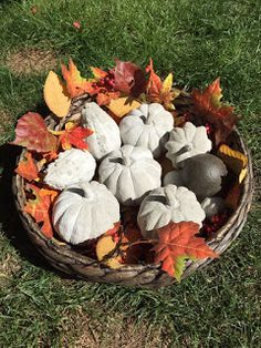 Betonplausch: Koffermarkt in Rüti, 26. September 2015 Cement, Concrete, 26 September, Firewood, Stuffed Mushrooms, Texture, Halloween, Plants, Kindergarten
