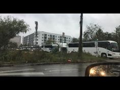 Busted! DNC caught hiring buses for protesters - YouTube