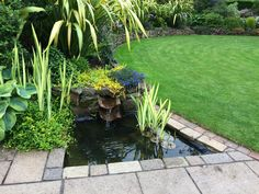 A crisp contemporary pool on the edge of a patio. I love the way a couple of pantiles have been used to create a water blade in this water feature to tie it in with the house.
