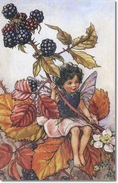 Cicely Mary Barker - Flower Fairies of the Autumn - The Blackberry Fairy Painting