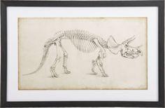Dinosaur Study II Print  | Crate and Barrel