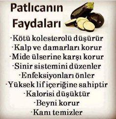 Patlıcanın faydaları.. #sağlıkhaberleri #sağlık