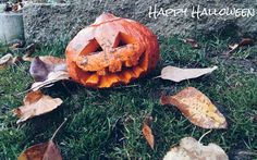 Happy Halloween!👻 #czechrepublic #pumpkin #autumn #likeforlike #halloween