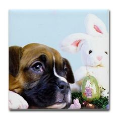 Happy Easter boxer Tile Coaster #boxer #cards #easter #tile #tiles #giftideas  #card #boxers #dog #pet #holiday