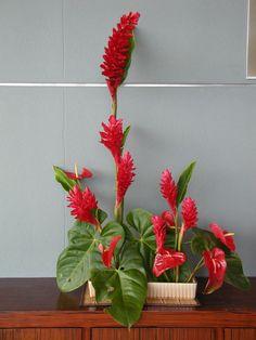 gordon lee floral art - Buscar con Google Floral Arrangements, Flower Arrangement, Tropical Flowers, Event Decor, Flower Decorations, Flower Art, Floral Design, Contemporary, Gifts