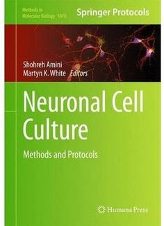 Neuronal Cell Culture: Methods And Protocols PDF