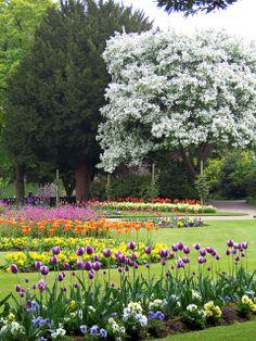 Abbey Gardens, Bury St Edmunds, Suffolk, England
