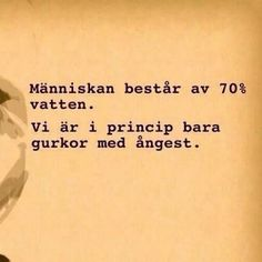 Vi är i princip bara gurkor med ångest. Swedish Quotes, Learn Swedish, Best Quotes, Life Quotes, Inspire Me, Life Lessons, Wise Words, Sentences, Wisdom