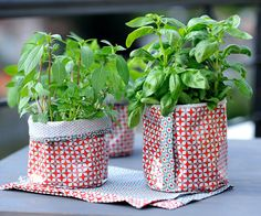 Fresh herbs in cache pots reversibles Diy Projects To Try, Sewing Projects, Creation Couture, Couture Sewing, Techno, Diy And Crafts, Sewing Patterns, Mozzarella, Fabric