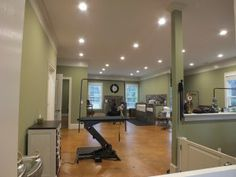 Pinned from Wydaily.com .An open floor plan allows dogs to roam at The Fuzzy Butt Stops Here (Hannah S. Ostroff/ WYDaily)