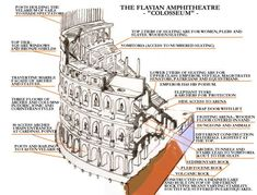 Lovely plan of the Roman Colosseum.