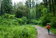 Easy Family Nature Walks near Zurich