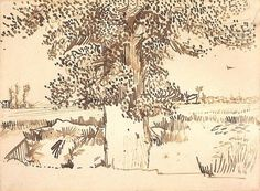 Landscape with a Tree in the Foreground - Vincent van Gogh
