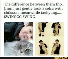 Poor kitty, but lol Tae