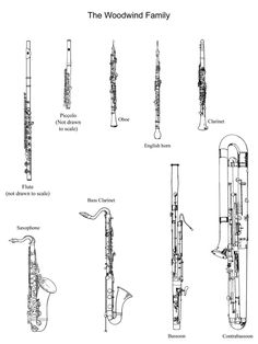 Pictures of the woodwind family to cut out and color. Great to have students write points about each instrument under each picture