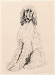 Untitled (Willow), 1980 by Anne Arnold