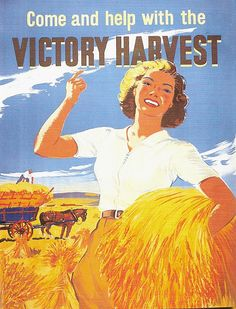 Come and help with the Victory Harvest -- WWII UK
