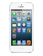 iPhone 5 White $550