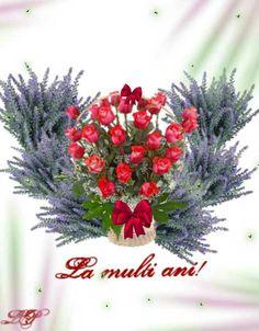 Christmas Wreaths, Happy Birthday, Holiday Decor, Home Decor, Happy Brithday, Decoration Home, Room Decor, Urari La Multi Ani, Happy Birthday Funny