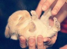 Too cutee ! ♥