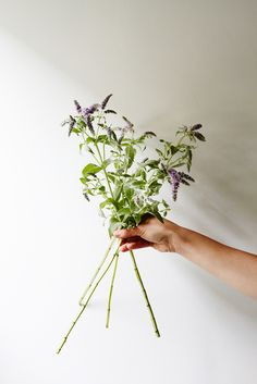 Flower-Arranging Secrets Straight From A Brooklyn Florist #refinery29  http://www.refinery29.com/diy-wedding-bouquets#slide3  Begin the arrangement with a base flower or foliage, like this mint.
