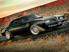 Custom Muscle Cars, Best Muscle Cars, American Muscle Cars, 1979 Pontiac Trans Am, Pontiac Firebird Trans Am, Us Cars, Race Cars, Tropical Fish Aquarium, Black Trans