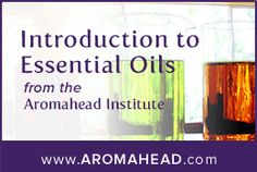 Aromatics International | Essential Oils and Aromatherapy Products | High-Quality, Organic & Wild-Crafted