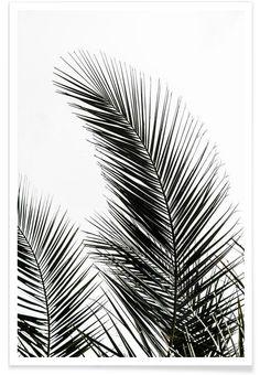 Palm Leaves 1 als Premium Poster von Mareike Böhmer   JUNIQE