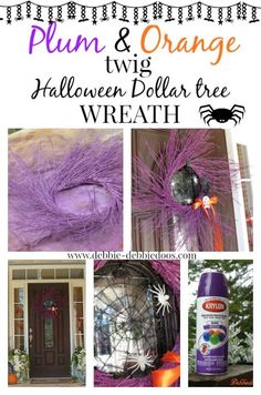 Plum and orange wreath with dollar tree accessories. Spray paint any color twig wreath per season. I think this is going on number 7!