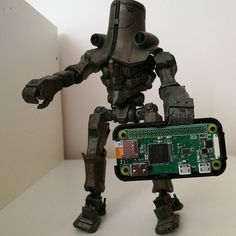 Cherno Alpha holding on to my new Pi Zero W. Can't have too many Pi's. #raspberrypi #computer