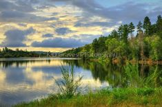 """Reflections on Lynx Lake Prescott Arizona"" by K D Graves Photography   Redbubble Prescott Arizona, Lynx, Long Hoodie, Wood Print, Art Boards, Decorative Throw Pillows, Travel Mug, Chiffon Tops, Reflection"
