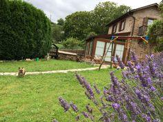 O Vicedo cottage