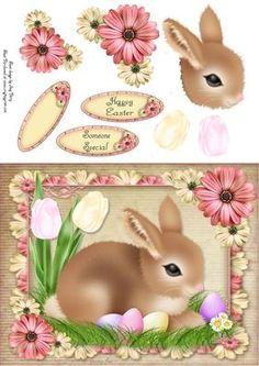 Brown Easter Bunny by Amy Perry Brown Easter Bunny in gorgeous floral frame, also has decoupage and choice of tag, Happy Easter, Someone Special and a blank tag for your own sentiment